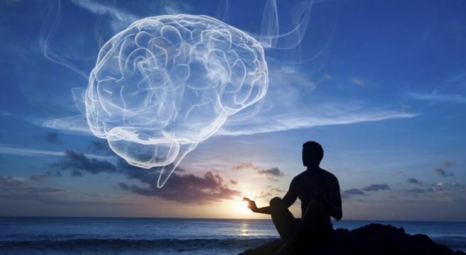 Harvard University Meditation Study Brain Gray Matter